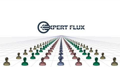 What is Expert Flux