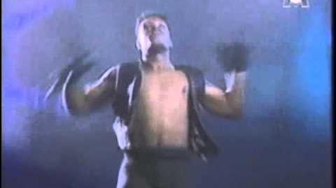Bass Bumpers Running (1993)