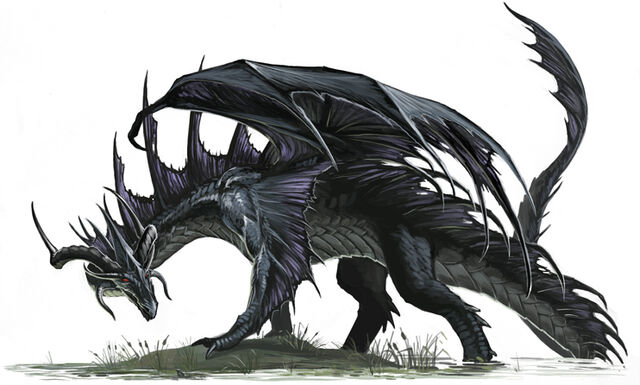 File:Black Dragon by BenWootten.jpg