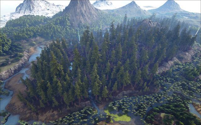 File:Redwood Forests.jpg