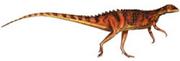 Scutellosaurus 1