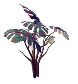 Burrecia mumundoreus
