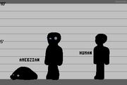 Amebzian Lineup