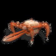 Chiser Spore