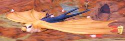 Forktail Sparrowbat