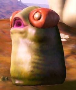 Haupi (Larva)