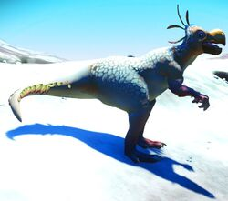 Thiasaurus Female