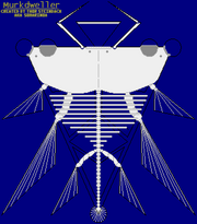 Murkdweller Skeletal