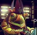 Stays (Gek)