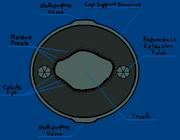 Zhivysh Cap Underside