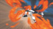 Técnica da Fênix Sábia de Fogo