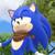 Spacephobic-Sonic
