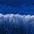 Renesmee321