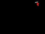 1966 Belgian Grand Prix