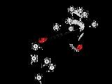 2013 Spanish Grand Prix