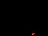 1963 Mexican Grand Prix