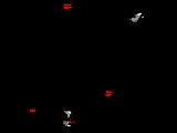 1962 German Grand Prix
