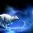SnowflakeWinterWolf's avatar