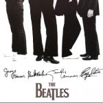 BeatlesgLee Fan