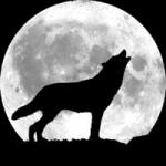 Ehpacha's avatar