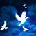 Stoudemire18's avatar