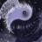 John Henderson's avatar