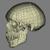 Boneheader