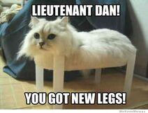 Lieutenant-dan-you-got-new-legs