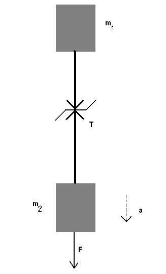 Fig 1.1.3