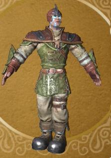 Leather armor suit