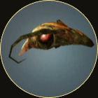 Waspqueenshead