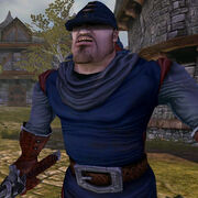 Albion Guard