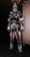 Zw-Women's Warrior Suit