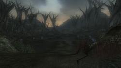 Darkwood Marshes