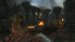 Darkwood Camp