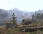 Mistpeak lumber harvest