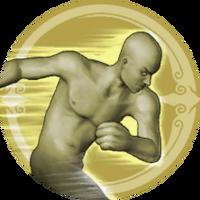 Skill Level Emblem