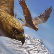 Endorian(Great)Eagle