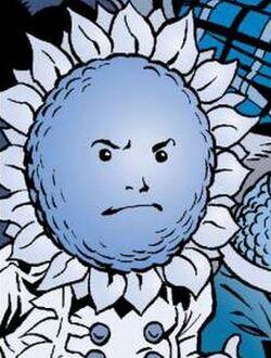 I25 Mr.Sunflower