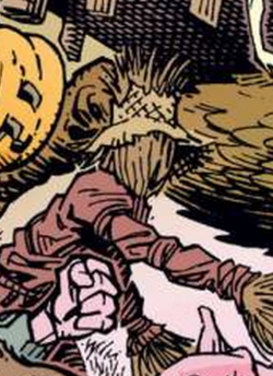 I4 Scarecrow