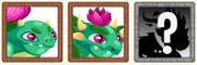 Nenufar dragon