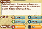 Nenufar dragon info