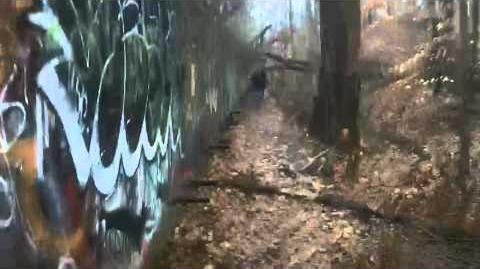 Entry 35- Shelter