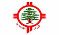 LebanesePatriarchateFlag.png