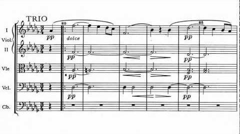 Dvorak - Serenade for strings, Op. 22, II