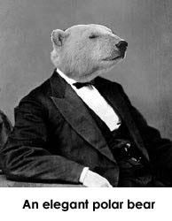 File:Suit bear.jpg