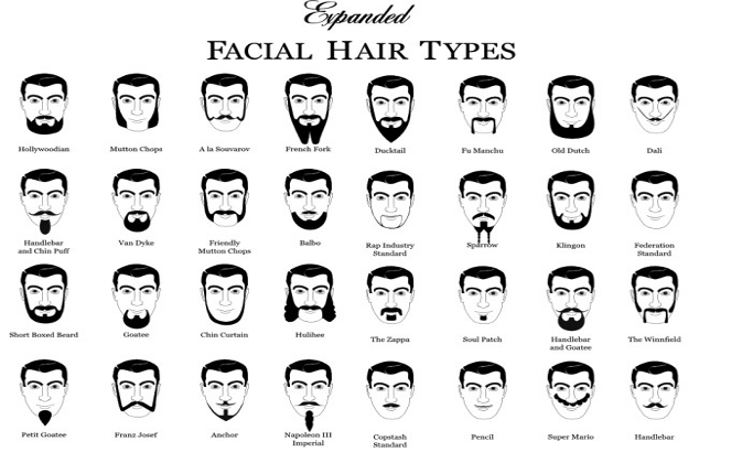 Image - Styles.png | Facial Hair Wiki | FANDOM powered by Wikia