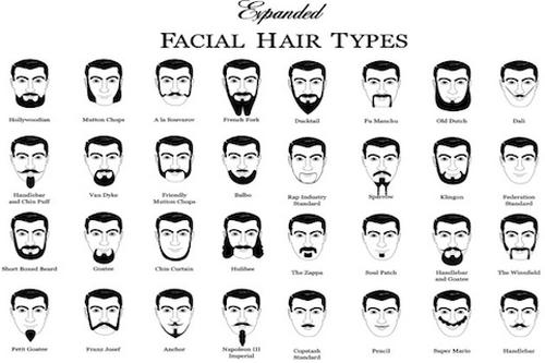Facial Hair Wiki