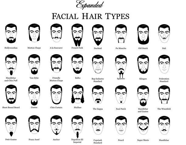 File:Facial Hair Types.jpg