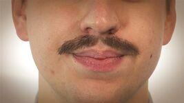 Category:Moustache styles